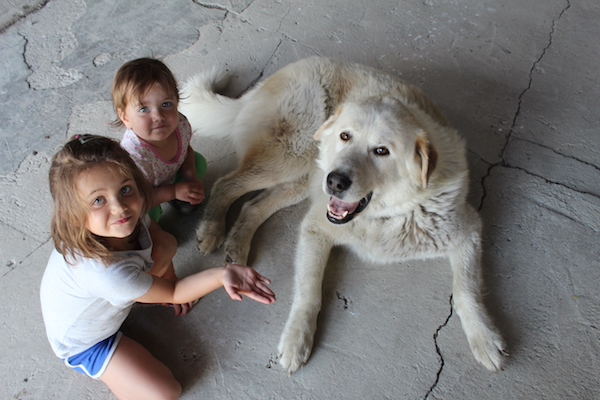 Myriam and Noémie meeting the Riverglen Farm dog.